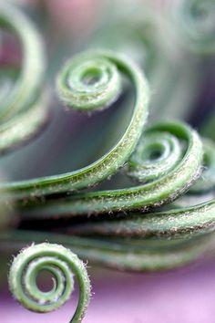 spirals    #smoothestdayever