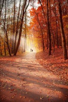 """""""Autumn walk"""""""