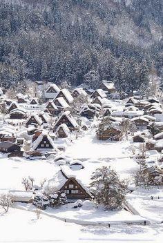Beleza do inverno.  Fotografia: Dreamy Nature.