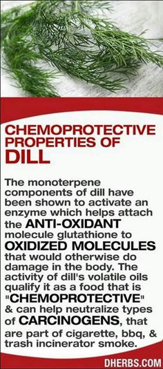 Chemoprotective Properties of Dill