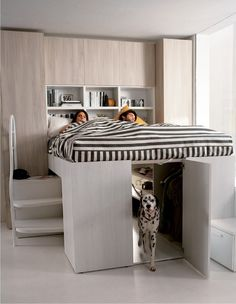 I want this bed someday when we have high ceilings. And forget the closet underneath, make it a dog kennel area so they don't sleep on us all night...