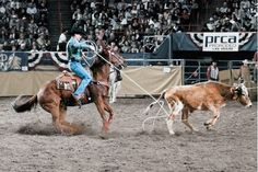 Before the Big Time: How Trevor Brazile, Clay Tryan, Travis Graves and Jade Corkill made it big