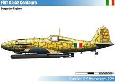 Fiat  G.55 'Centauro', modificato per il trasporto di siluri.
