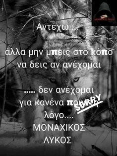 Wolf Quotes, Greek Quotes, So True, Health Tips, Angel, Movie Posters, Film Poster, Billboard, Film Posters