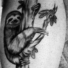 A follow up sloth tattoo courtesy of @j_leeroy! You rock the sloth, buddy. #stevethesloth #savetherainforest