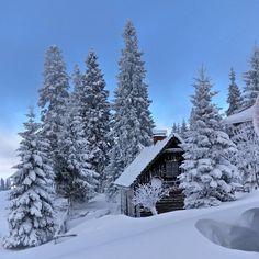 Hochkar   Austria - frozy days ❄ . #travelgoals #snow #powder #snowing #tiefschnee #beautifuldestination #skiing #snowboard #girlswhotravel #ice #qualitytime #austriatoday #visitaustria #discoveraustria#365austria #visitaustria #austria #hochkar #niederösterreich #bluesky #picoftheday #picsofaustria #schnee #perfectday #skyisthelimit #skymasters #house #frozen Quality Time, Snowboard, Perfect Day, Winter Day, Skiing, Frozen, Powder, Ice, Country