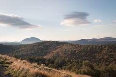 https://flic.kr/p/N7pvjm | Arizona Morning, Kaibab National Forest