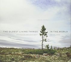 The Oldest Living Things in the World - 022605750X | Smithsonian.com Store