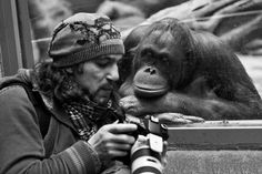 Lenderman photographer Vlad (aka Boniface) shows a monkey by her photo shoot.  Moscow Zoo.