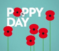 The poppy is the symbol of ANZAC Day (April reminding Australians and New Zealanders of of sacrifices made during wars.