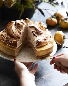 Pumpkin Cheesecake with Marshmallow Meringue - What's Gaby Cooking Pumpkin Dessert, Pumpkin Cheesecake, Cheesecake Recipes, No Bake Desserts, Just Desserts, Dessert Recipes, Pear Recipes, Fall Recipes, Whats Gaby Cooking