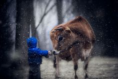 This Dad's Stunning Amateur Photography Captures the Beauty of Growing Up on a Farm