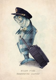The Pilot Fish Art Print - would be a nice tribute to my dad