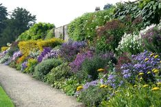 herbaceous border at Waterperry, Oxfordshire, UK
