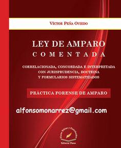 LIBROS DVDS CD-ROMS ENCICLOPEDIAS EDUCACIÓN EN PREESCOLAR. PRIMARIA. SECUNDARIA Y MÁS: LEY DE AMPARO COMENTADA Correlacionada, concordada...