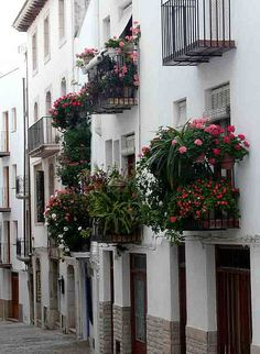 March look at Peniscola, Castellón, Spain Best Places To Retire, Places To Visit, Valencia City, Best Location, Geraniums, Arches, Amazing Places, Places Ive Been, The Good Place