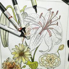 Troszkę kolorowania :) jednak najbardziej lubię pisaki, dają fajny efekt zmieszania kolorów i delikatne odcienie.  #flower #coloringbook #graphic #graphicdesign #floral #color #ink #illustration #poster #walldecor #interior #decoration #agakubish #dotwork #art #artwork #promarker #aquamarker #letraset