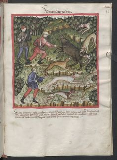 Cod. Ser. n. 2644, fol. 96r: Tacuinum sanitatis: Venatio terrestris