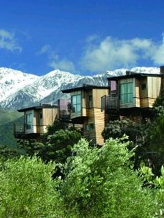 Hapuku Lodge in New Zealand. Luxury tree houses! My childhood dreams come true.