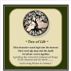 10 things to know about the tree of life great gardens ideas tree of life meaning yahoo search results yahoo image search results aloadofball Images