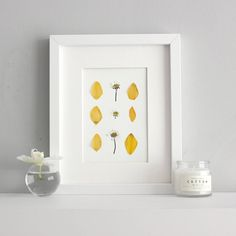 Mothers day picture Pressed flower artwork daffodil picture