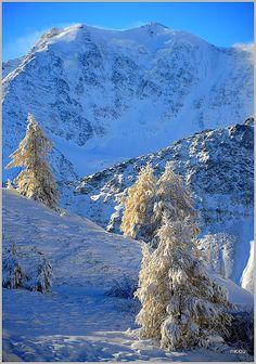 Simplon Pass, Valais, Switzerland
