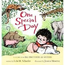 One Special Day, written by Lola M. Schaefer and illustrated by Jessica Meserve: New baby books are rarely as 'special' as this one! You know there are a lot of them, and new parents are always on the lookout. They won't find many that are as clever and heartwarming. Spencer is a boy who lives for adventure. He is like many in the animal kingdom; loving movement, noise, boasting, laughs, big messes and wild antics. When his parents bring home a new baby, Spencer adds another descriptor....