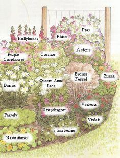 Butterfly Garden Plans 2019 Bring beautiful butterflies to your home with these easy to do butterfly plans.With listed plants that a butterfly will love. The post Butterfly Garden Plans 2019 appeared first on Flowers Decor. Flower Yellow, Hummingbird Garden, Design Jardin, Garden Cottage, Prairie Garden, Easy Garden, Cut Garden, Brick Garden, Garden Bar