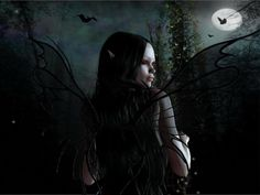 The 45 Best Fairies Of Night Images On Pinterest