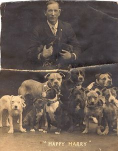 Amy McKinney's Great Uncle-in-Law, with a pack of Pits. #pitbull #dogparkpublishing www.dogparkpublishing.com www.facebook.com/ittypitties