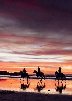 Sunset horseback riding on the beach in Tamarindo Costa Rica.