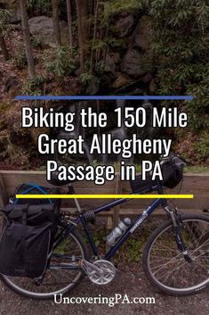The Ride of Your Life: My Top Tips for Biking the Great Allegheny Passage in Pennsylvania Mountain Bike Shoes, Mountain Biking, Cycling Quotes, Bike Quotes, Bicycle Maintenance, Bike Reviews, Bike Seat, Bike Trails, Pennsylvania