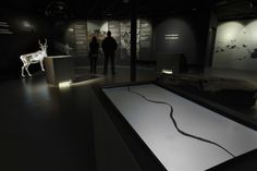 European Design - Interactive installations for a Wild Reindeer Exhibition, Agency: Gagarin, Agency URL: http://gagarin.is, Category: 16. Miscellaneous Digital, Award: Silver, Year: 2014, Country: Iceland, City: Reykjavík