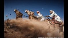 """Camel Ardah,"" by Ahmed Al Toqi of Muscat, Oman,"