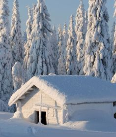 Frozen building in Paljakka, Puolanka, Kainuu, Finland. Winter Szenen, Winter Magic, Winter Time, Winter Christmas, Winter Pictures, Nature Pictures, Beautiful Pictures, Beautiful Winter Scenes, Snow Scenes