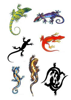 I'd probably prefer a more stylized gecko, but if not, something like the purple and blue one at the top right corner here.