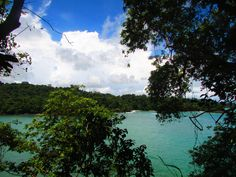 Nature in Manuel Antonio #Nature #Beach