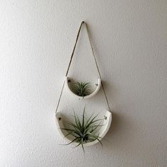 Developed to showcase each air plant's individual beauty, this air plant cradle is the ideal balance between sculpture and functionality. Each cradle is completely hand crafted out of gorgeous unglazed natural white earthenware clay that is slow dried for Hanging Air Plants, Hanging Planters, Indoor Plants, Indoor Gardening, Indoor Herbs, Hanging Herbs, Hanging Shelves, Plant Wall, Plant Decor