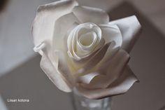 Liisan kotona: DIY miljoona, miljoona ruusua