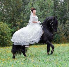 Instagram media by top__horses - . 💞🌷💞 . . #horse #equine #equestrian  #animal #horse #اسب  #Лошадь #حصان #سوارکار #jumipnig #tourism #tourist #лошадь #at #马 #馬  #paard #Pferd #cavallo #top__horses . به کانال اسب ایران بپیوندید. لینک کانال در بیو ، صفحه اصلی.