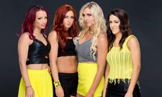 Four Horsewomen/WWE main roster speculation, UFC fighter in the Diva Search?