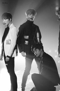 SF9 ⛄ Chani, Youngbin y ROWOON