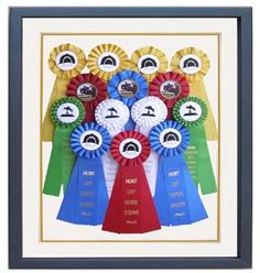 Horse ribbon display idea, separate frame  for each year?