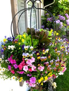 Get Your Garden Off the Ground | Hanging basket mixed with vegetables and flowers