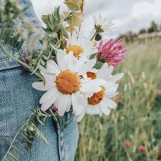 """""""Mi piace"""": 669, commenti: 5 - FAUBOURG54 (@faubourg54) su Instagram: """"Une SURPRISE fleurie 🌸 Ciao ragazze, nous vous avons souvent parlé de nos copines de @morgana_sis,…"""" Creative Photography, Photography Poses, Nature Photography, Spring Aesthetic, Flower Aesthetic, Tumblr Fotos Instagram, Belle Photo, Pretty Pictures, Aesthetic Pictures"""