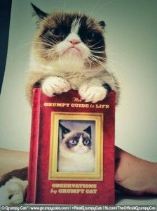 The Daily Grump | July 3, 2014 | Grumpy Cat® - The world's grumpiest cat!