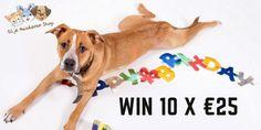 Maak ook 10x kans op €25 euro shoptegoed #giveaway #win #blijehuisdierenshop Blijehuisdiershop.nl Euro, Baby, Baby Humor, Infant, Babies, Babys