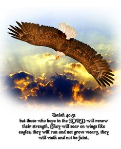 ...but those who hope in the Lord will renew their strength. They will soar on wings like eagles; they will run and not grow weary, they will walk and not be faint. ~ Isaiah 40:31