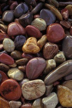 "Polished Rocks | Wet ""glacial till"", glacially eroded rocks, polished over eons of ..."