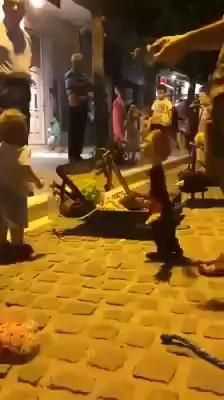 Cute Funny Baby Videos, Funny Baby Memes, Cute Funny Babies, Funny Videos For Kids, Funny Short Videos, Funny Animal Videos, Funny Kids, Funny Cute, Cute Kids